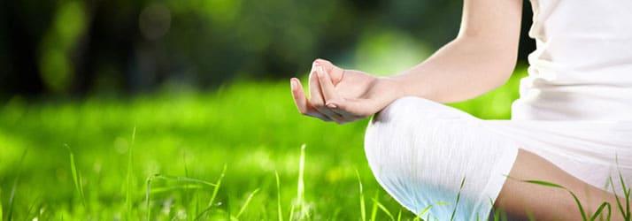 Meditate to Proliferate
